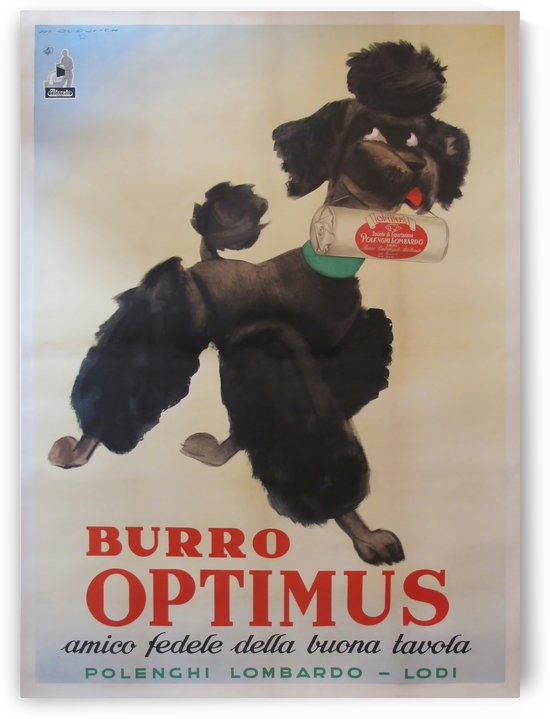 Vintage Italian Poodle Poster by VINTAGE POSTER