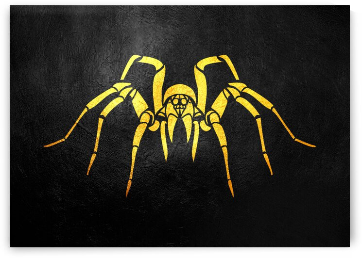 spider unlabeled by ABConcepts