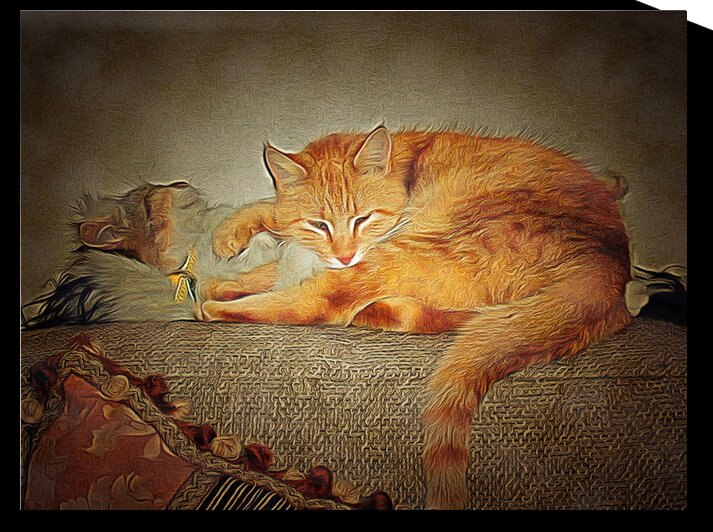 Best Cat Buddies Resting by Dorothy Berry-Lound