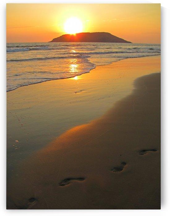 Footprints in the Sand by J  Jasmyn Phillips