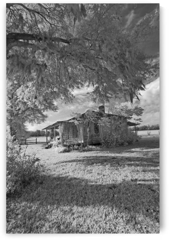 Cracker Cabin Vertical  by Bob Barbour
