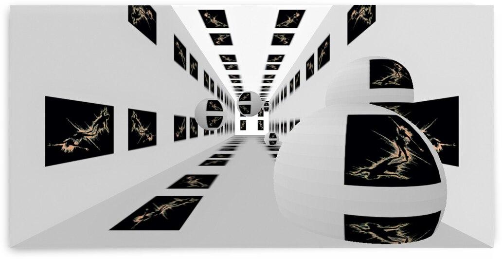 Firebird RoomXpander Hall by Lowell Phoenix Devin