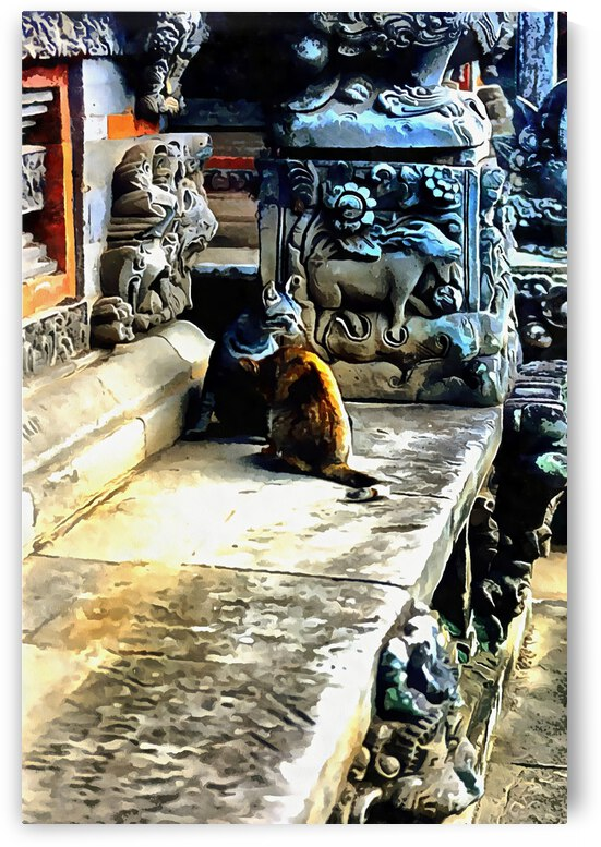Temple Cats in Bali by Dorothy Berry-Lound