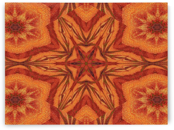 Tribal Sand 91 by Sherrie Larch