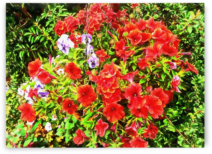 A Basket Of Red Petunias by Dorothy Berry-Lound