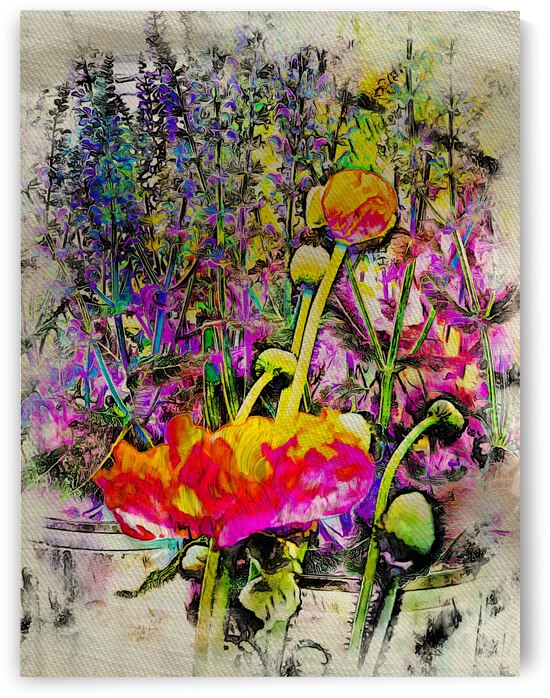 Poppy and Lavender Fusion by Dorothy Berry-Lound
