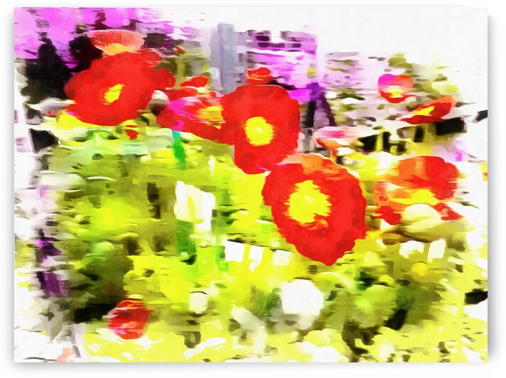 Poppy Abstract Thoughts by Dorothy Berry-Lound