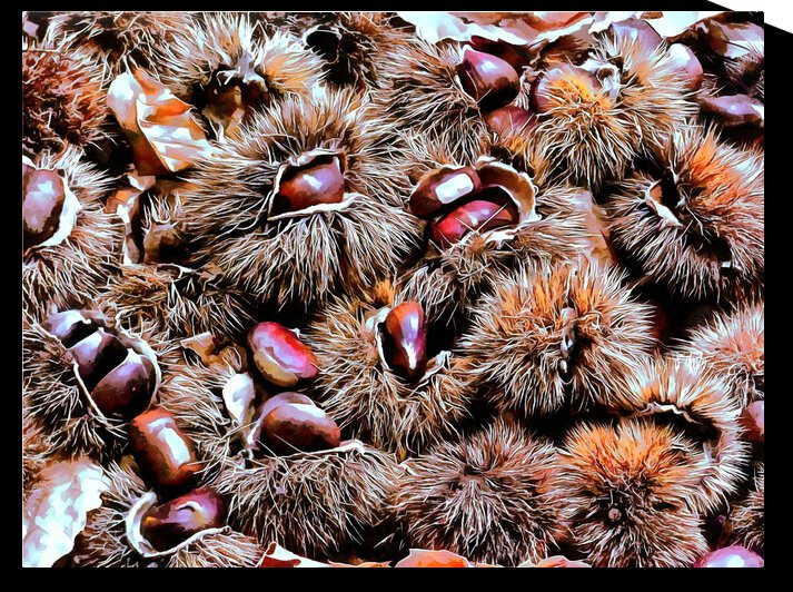 Chestnut Overload by Dorothy Berry-Lound