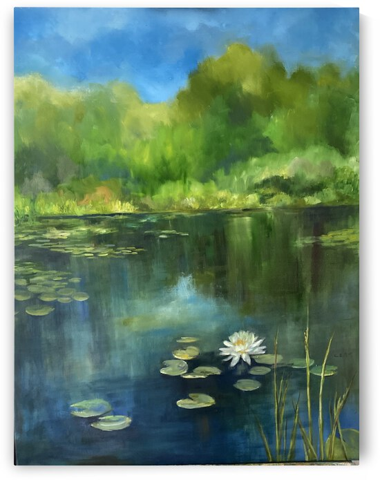 Country pond by Cene