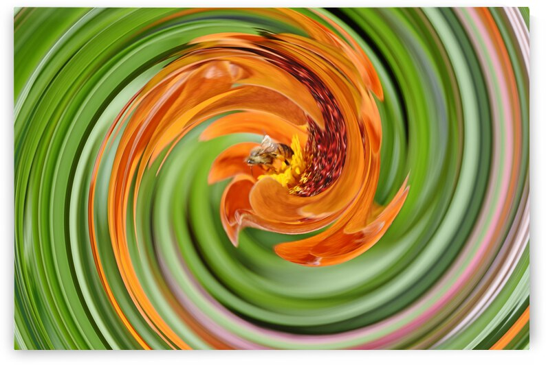 Hypnotic Bee  by Barbara J Durham Creations
