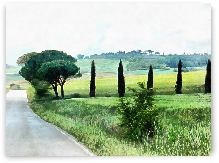 Misty Morning in Umbria by Dorothy Berry-Lound