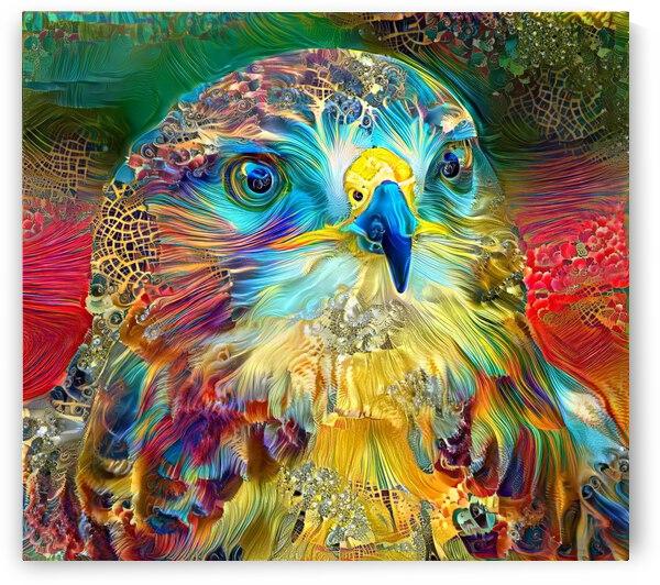 The Rainbow Falcon by Angela Cooper Hanley