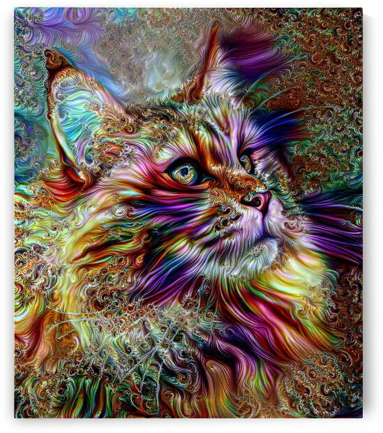 Majestic Maine Coon Cat by Angela Cooper Hanley