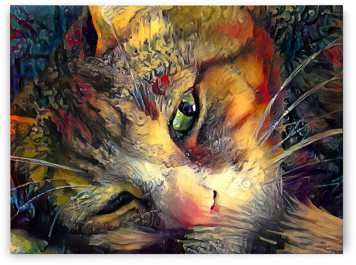 Cat Face  by Angela Cooper Hanley
