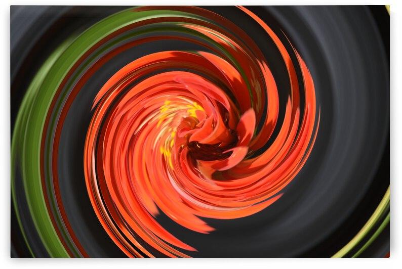Distortion Series Orange Black by Barbara J Durham Creations