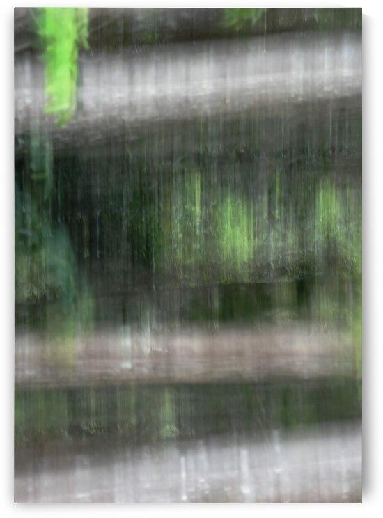 Photo Painting Series  No. 2 by Barbara J Durham Creations