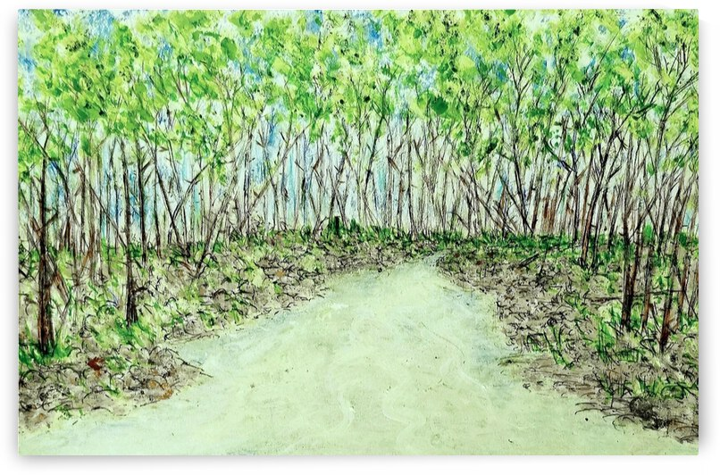 Forest Daydream by djjf