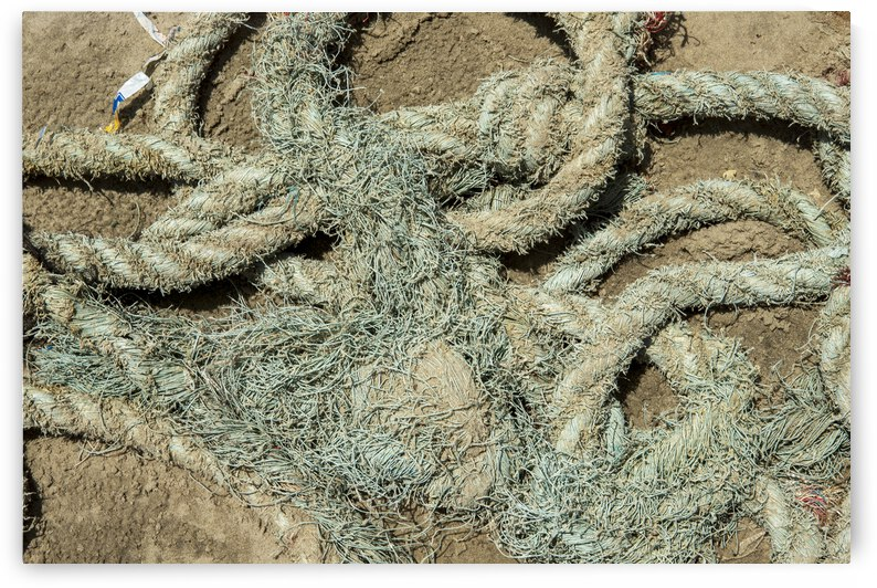Old and dirty rope on sands by fabiomsalles