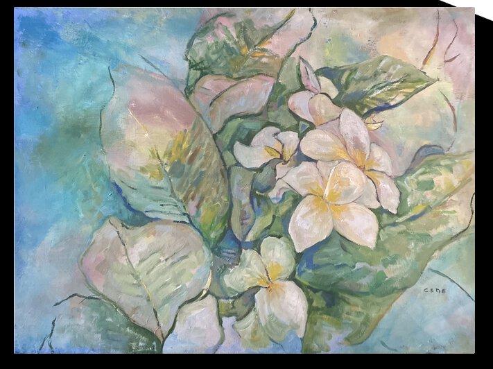 Plumeria 2 by Cene