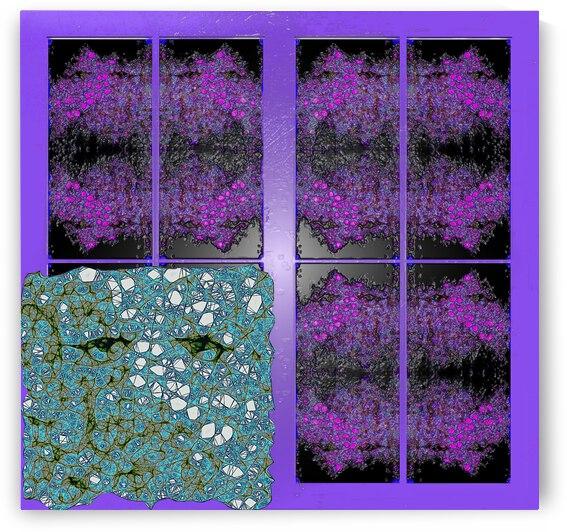 Spiritual Brainwaves by Dorothy Berry-Lound