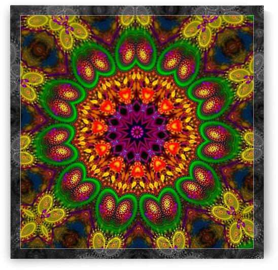The Petal Throne Kaleidoscope by Angela Cooper Hanley