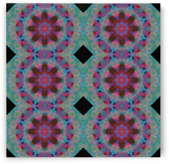 Barnie Paw Prints Kaleidoscope 2 extended by Dorothy Berry-Lound