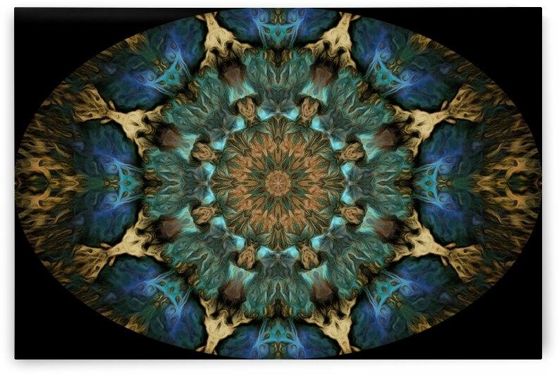 Barnie Paw Prints Kaleidoscope 6 by Dorothy Berry-Lound
