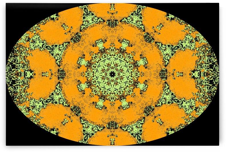 Barnie Paw Prints Kaleidoscope 9 by Dorothy Berry-Lound