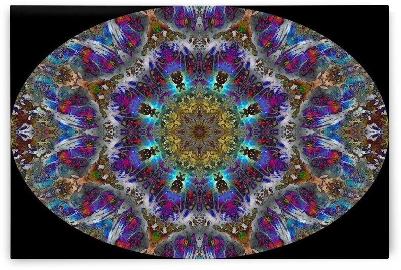 Barnie Paw Prints Kaleidoscope 4 by Dorothy Berry-Lound