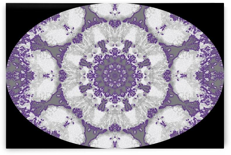 Barnie Paw Prints Kaleidoscope 7 by Dorothy Berry-Lound