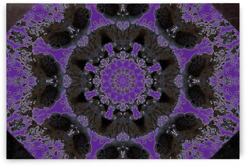 Barnie Paw Prints Kaleidoscope 1 by Dorothy Berry-Lound
