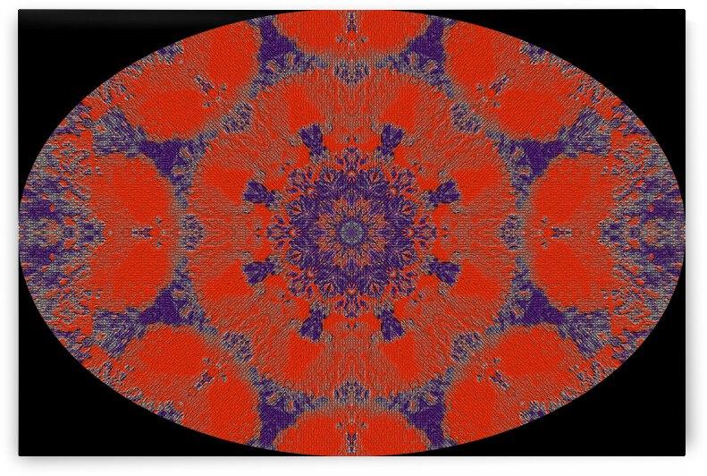 Barnie Paw Prints Kaleidoscope 16 by Dorothy Berry-Lound