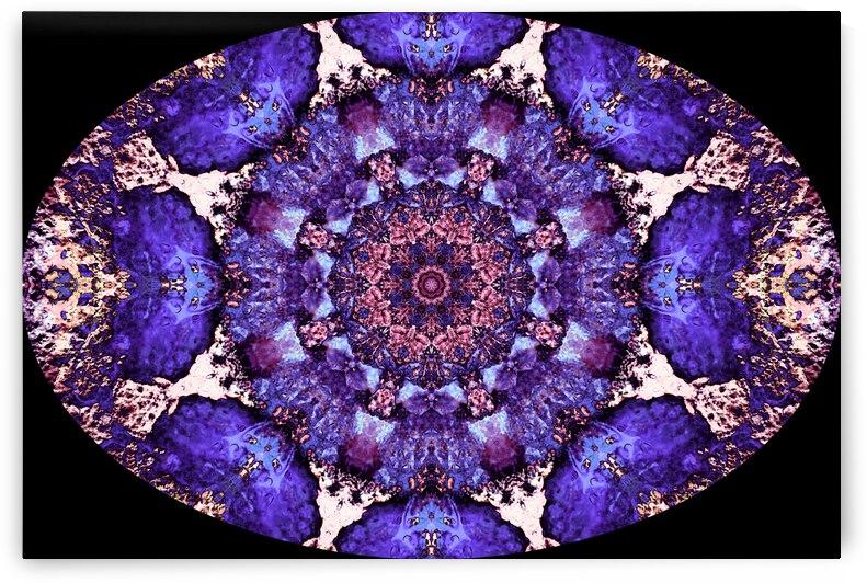 Barnie Paw Prints Kaleidoscope 13 by Dorothy Berry-Lound