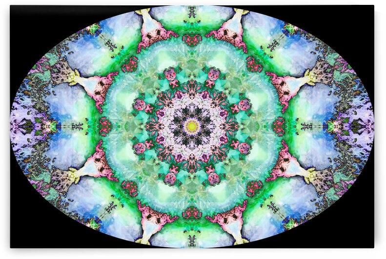 Barnie Paw Prints Kaleidoscope 10 by Dorothy Berry-Lound