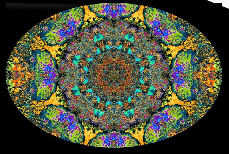 Barnie Paw Prints Kaleidoscope 12 by Dorothy Berry-Lound