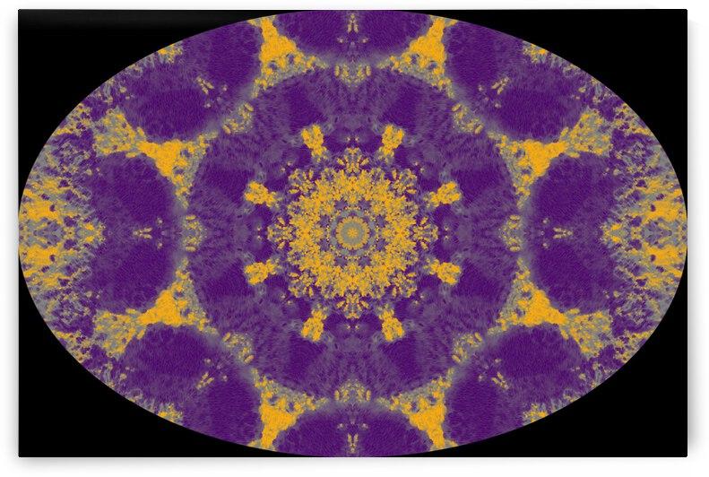 Barnie Paw Prints Kaleidoscope 15 by Dorothy Berry-Lound
