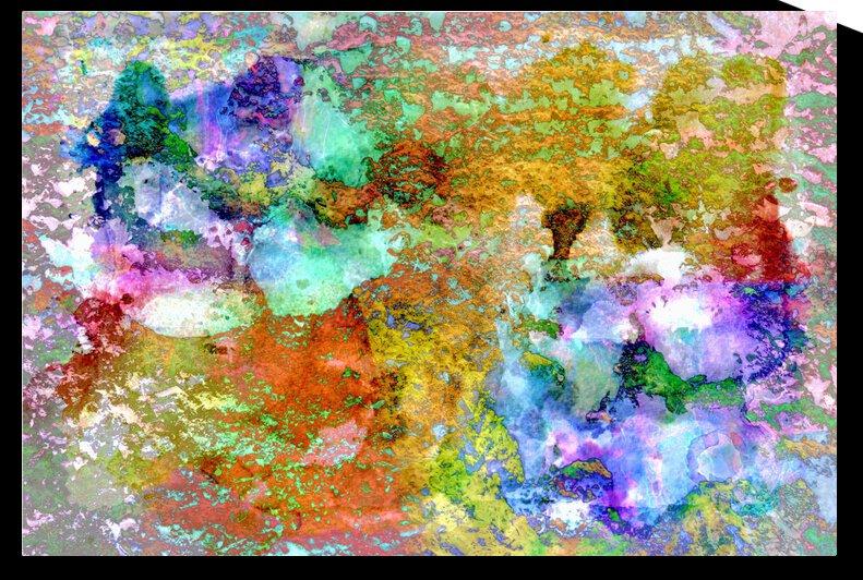 Paw Prints Rainbow by Dorothy Berry-Lound