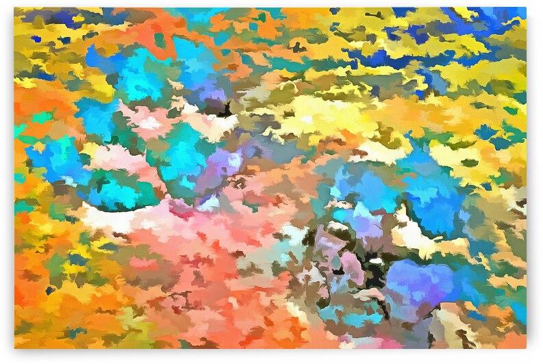 Paw Prints Pop Art by Dorothy Berry-Lound