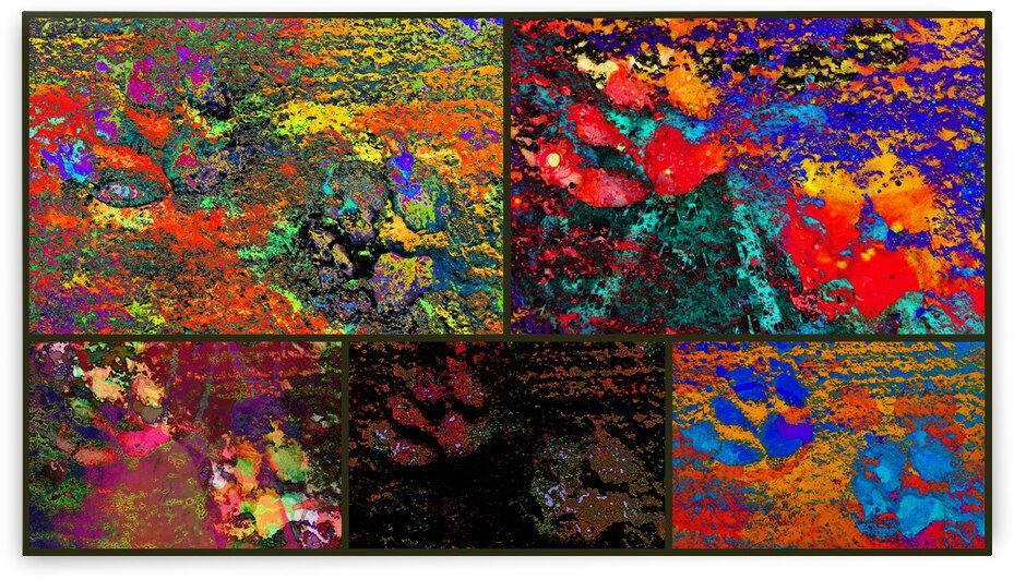 Dazzling Paw Prints Collage by Dorothy Berry-Lound