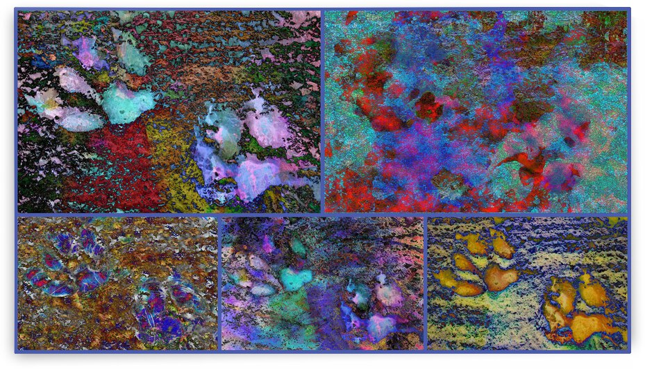 Blue Paw Prints Collage by Dorothy Berry-Lound