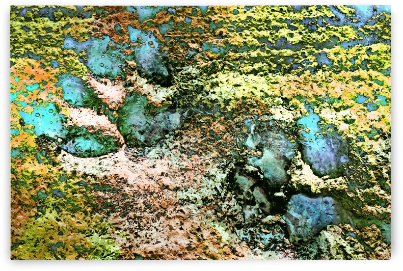 Paw Prints Shades of Green by Dorothy Berry-Lound