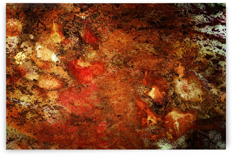Paw Prints Warm Colours by Dorothy Berry-Lound