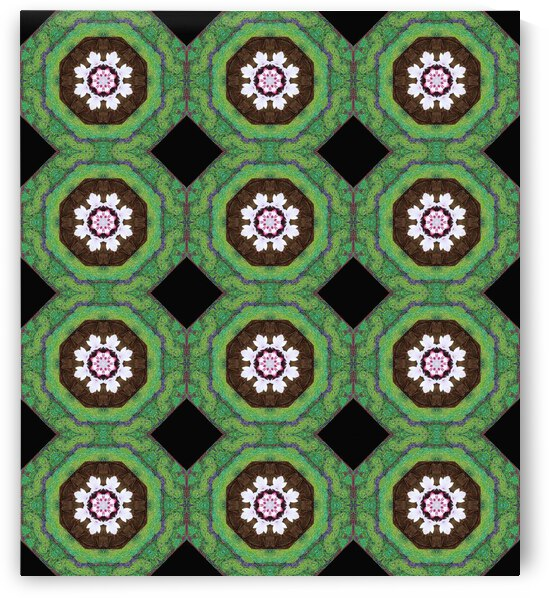 Apricot Blossom Fantasy Kaleidoscope Extended by Dorothy Berry-Lound
