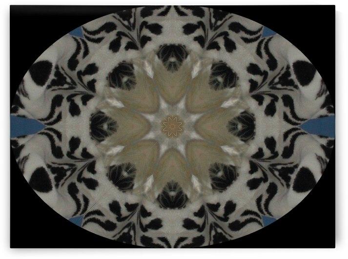 Cat Kaleidoscope 5 by Dorothy Berry-Lound