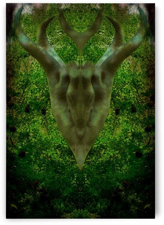 Animal Spirit by Dorothy Berry-Lound