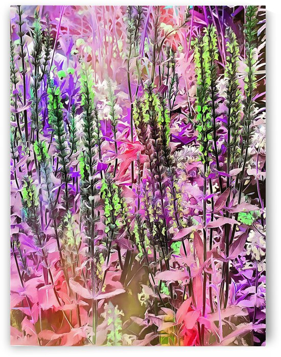 Floral Vision by Dorothy Berry-Lound
