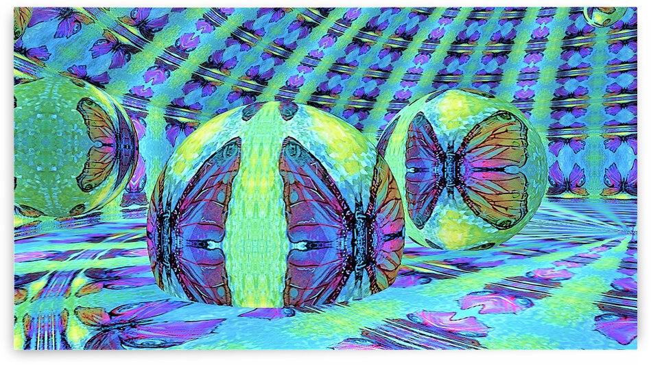 Butterfleye RoomXpander Hive by Lowell Phoenix Devin