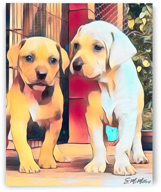 Helgas Pups by Susanne McMillan