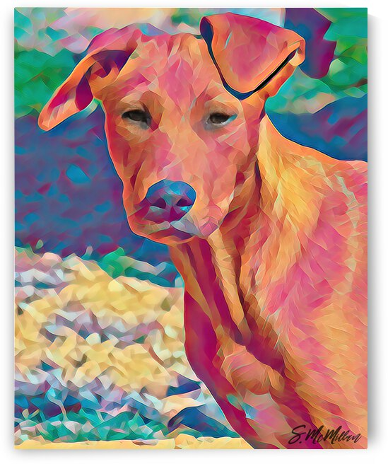 Red Dog by Susanne McMillan