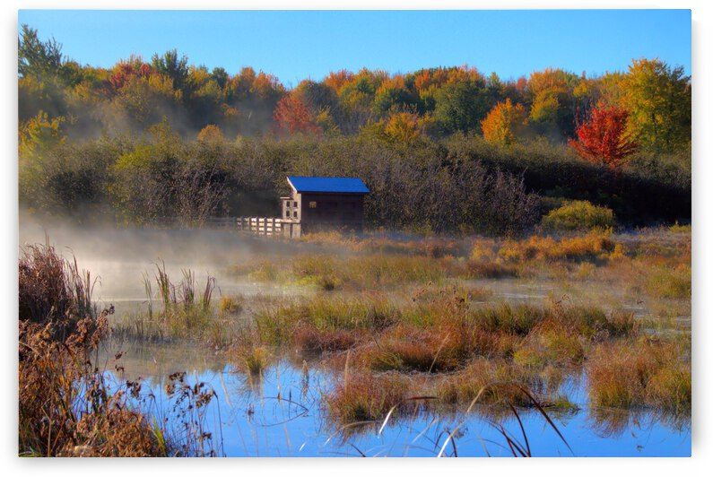 Misty Morning Marsh by Bern E King Photography